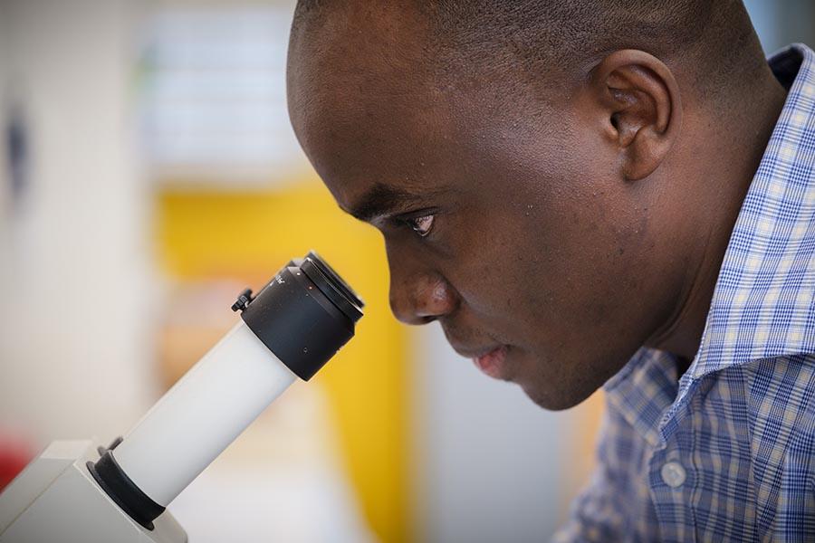Benson Edagwa, PhD, looks into a microscope.