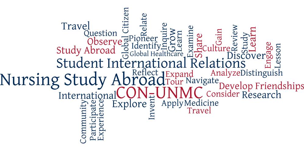 International Experiences Nursing University Of Nebraska Medical