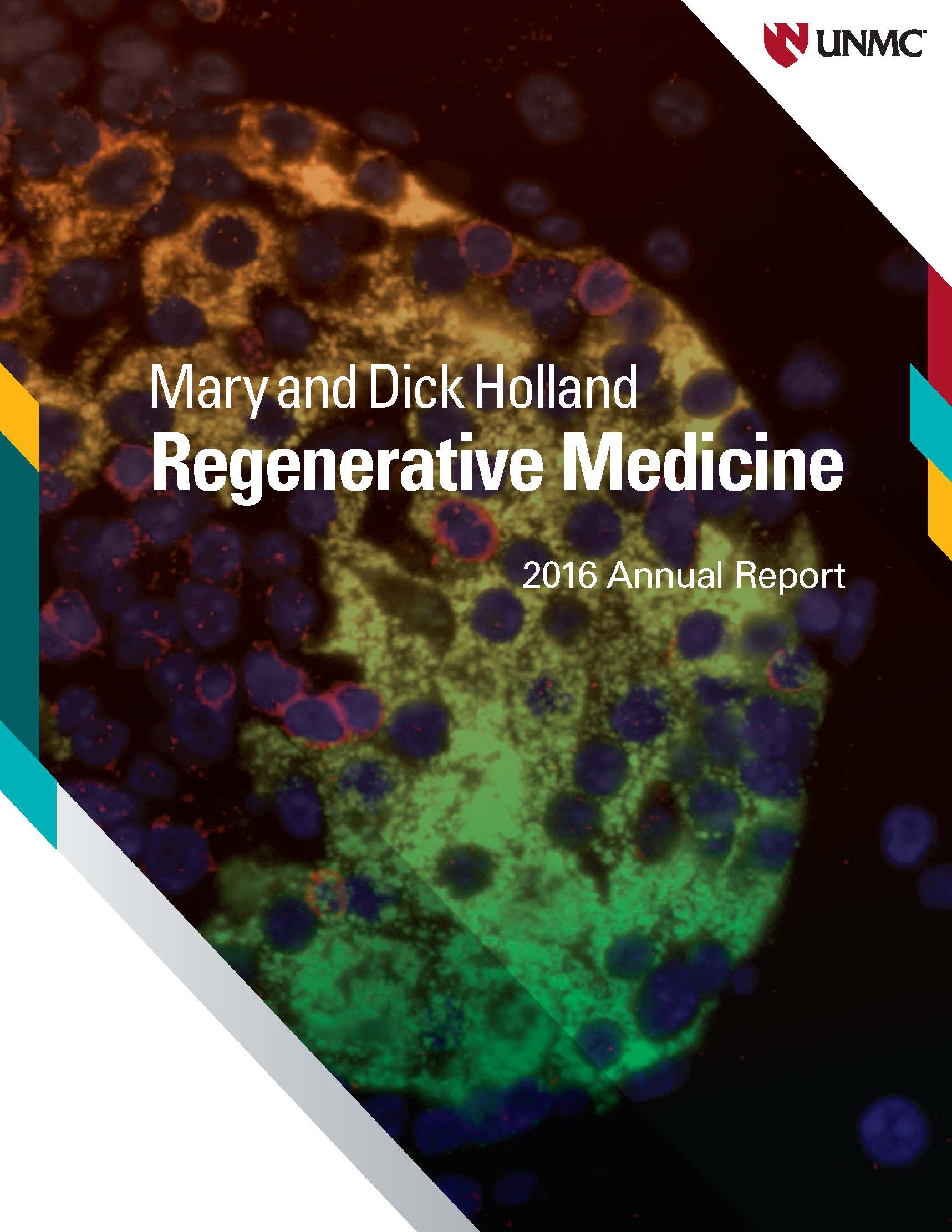 News | Regenerative Medicine | University of Nebraska Medical Center